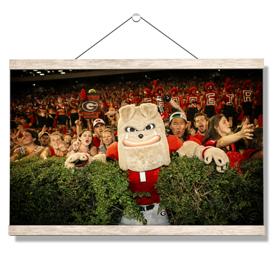 Georgia Bulldogs - Hairy in the Hedges - College Wall Art #Hanging Canvas