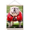 Georgia Bulldogs - Uga Poised II - College Wall Art #Hanging Canvas