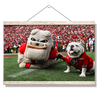 Georgia Bulldogs - Hairy and Uga Game Ready - College Wall Art #Hanging Canvas