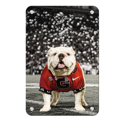 Georgia Bulldogs - Uga Under the Lights - College Wall Art #Metal