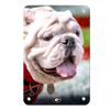 Georgia Bulldogs - Uga Portrait - College Wall Art #Metal