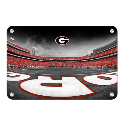 Georgia Bulldogs - Sanford Stadium End Zone Duotone - College Wall Art #Metal