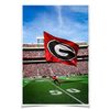 Georgia Bulldogs - The G Flag - College Wall Art #Poster