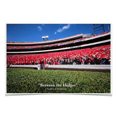 Georgia Bulldogs - Between the Hedges UGA - College Wall Art #Poster