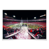 Georgia Bulldogs - Dawg Entrance - College Wall Art#Poster