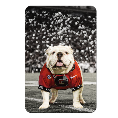 Georgia Bulldogs - Uga Under the Lights - College Wall Art #PVC
