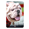 Georgia Bulldogs - Uga Portrait - College Wall Art #PVC