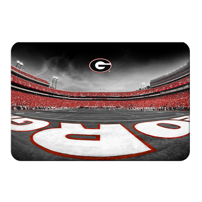 Georgia Bulldogs - Sanford Stadium End Zone Duotone - College Wall Art #PVC
