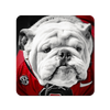 Georgia Bulldogs - Uga Close Up - College Wall Art #PVC