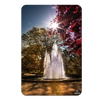 Georgia Bulldogs - The Fountain - College Wall Art #PVC
