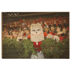 Georgia Bulldogs - Hairy in the Hedges - College Wall Art #Wood