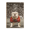 Georgia Bulldogs - Uga Under the Lights - College Wall Art #Wood