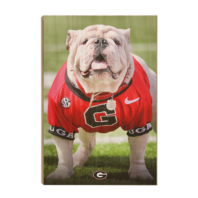 Georgia Bulldogs - Uga Poised II - College Wall Art #Wood