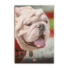 Georgia Bulldogs - Uga Portrait - College Wall Art #Wood