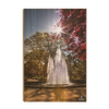 Georgia Bulldogs - The Fountain - College Wall Art #Wood