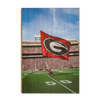 Georgia Bulldogs - The G Flag - College Wall Art #Wood