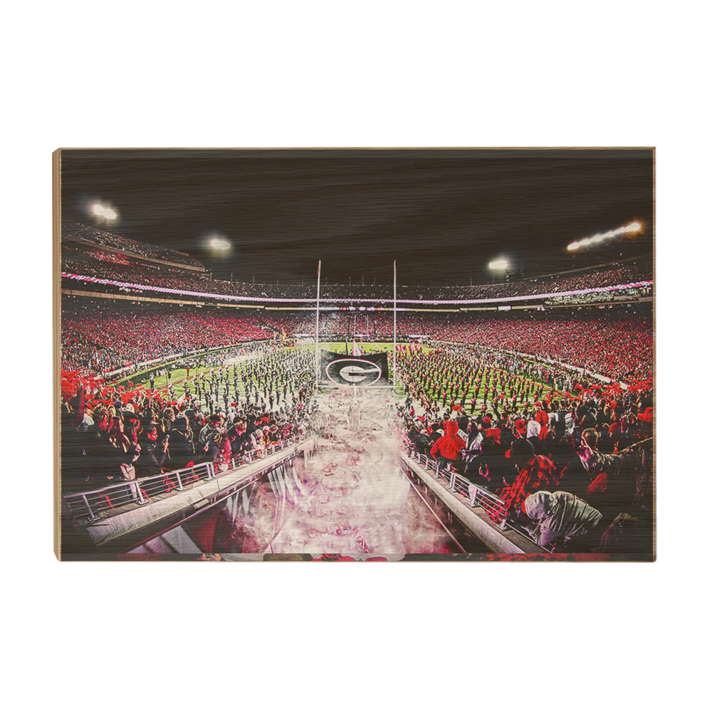 Georgia Bulldogs - Dawg Entrance - College Wall Art#Canvas