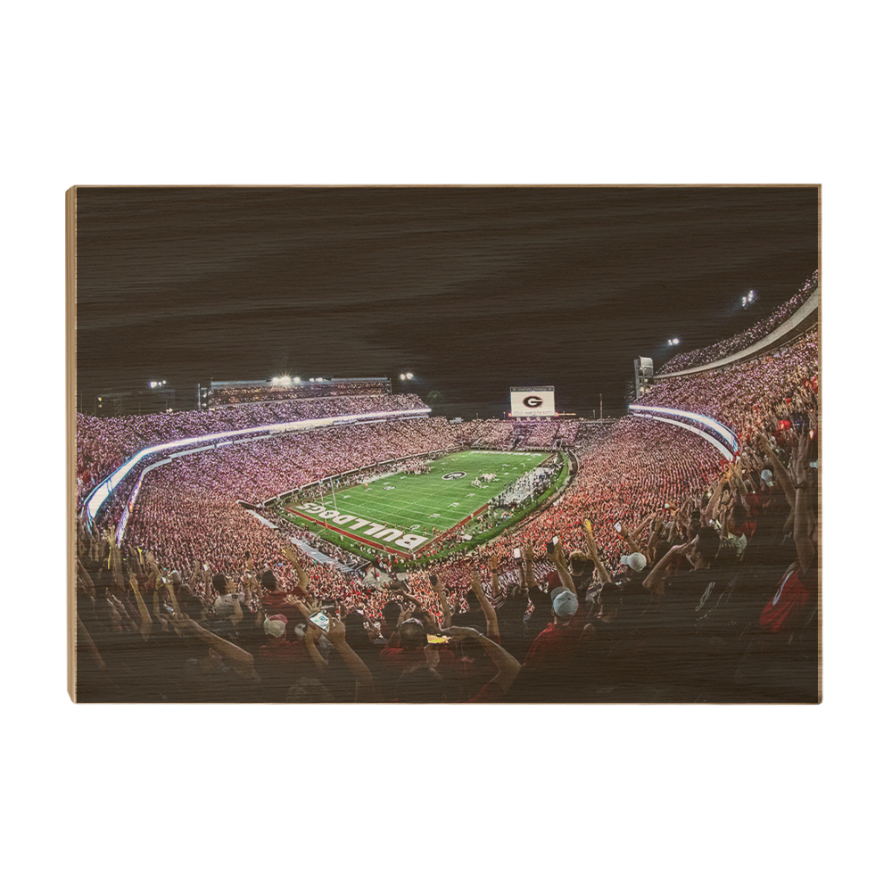 Georgia Bulldogs - Aerial Sanford Lights - College Wall Art #Canvas