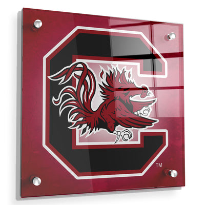 South Carolina Gamecocks - Gamecocks Red - College Wall Art #Acrylic