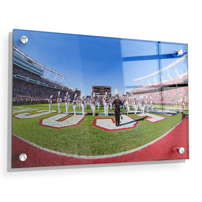 South Carolina Gamecocks - Half Time - College Wall Art #Acrylic
