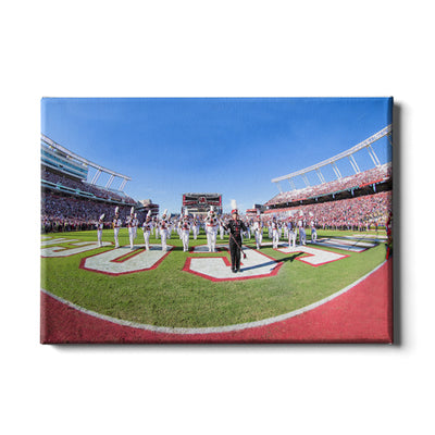 South Carolina Gamecocks - Half Time - College Wall Art #Canvas
