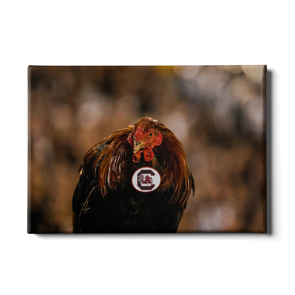 South Carolina Gamecocks Canvas College Wall Art The spurs won four nba championships. south carolina gamecocks canvas