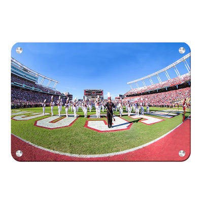 South Carolina Gamecocks - Half Time - College Wall Art #Metal