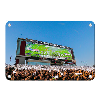 South Carolina Gamecocks - Space Odyssey - College Wall Art #Metal