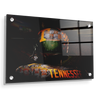Tennessee Volunteers - TN Football - College Wall Art #Acrylic
