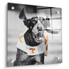Tennessee Volunteers - Smokey TD - College Wall Art #Acrylic