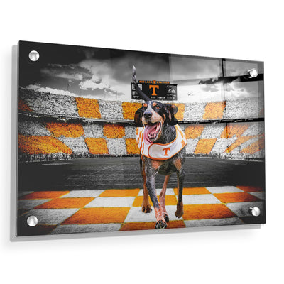 Tennessee Volunteers - Smokey's Backyard - College Wall Art #Acrylic