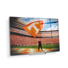 Tennessee Volunteers - Volunteer - College Wall Art #Desktop Mini