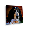 Tennessee Volunteers - TN Smokey Vols - College Wall Art #Acrylic MIni