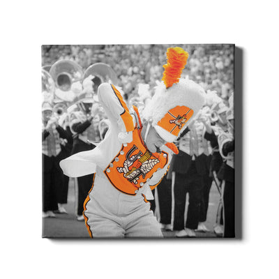 Tennessee Volunteers - Drum Major - College Wall Art #Canvas