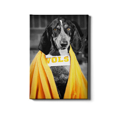 Tennessee Volunteers - Jedi Smokey - College Wall Art #Canvas