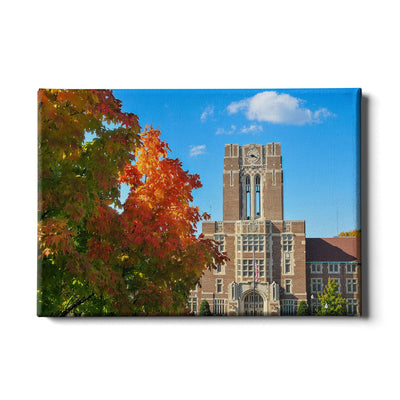 Tennessee Volunteers - Ayres Fall - College Wall Art #Canvas