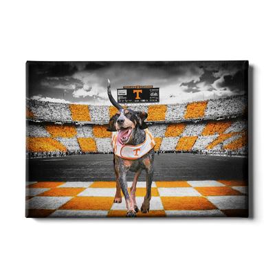 Tennessee Volunteers - Smokey's Backyard - College Wall Art #Canvas