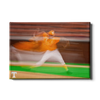 Tennessee Volunteers - Vols Baseball - College Wall Art #Canvas