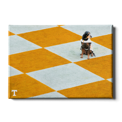 Tennessee Volunteers - Checkerboard Smokey - College Wall Art #Canvas
