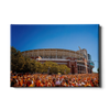 Tennessee Volunteers - Orange Swarm - College Wall Art #Canvas