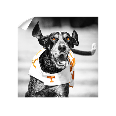 Tennessee Volunteers - Smokey TD - College Wall Art #Wall Decal