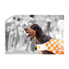 Tennessee Volunteers - Smokey X - College Wall Art #Wall Decal