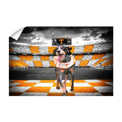 Tennessee Volunteers - Smokey's Backyard - College Wall Art #Wall Decal