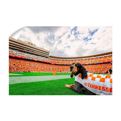 Tennessee Volunteers - Smokey's Tennessee - College Wall Art #Wall Decal