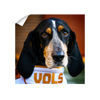 Tennessee Volunteers - TN Smokey Vols - College Wall Art #Wall Decal