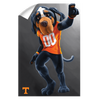 Tennessee Volunteers - Smokey - College Wall Art #Wall Decal