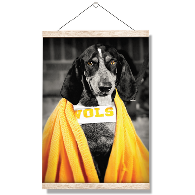 Tennessee Volunteers - Jedi Smokey - College Wall Art #Hanging Canvas