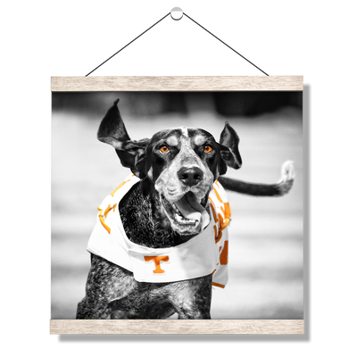 Tennessee Volunteers - Smokey TD - College Wall Art #Hanging Canvas