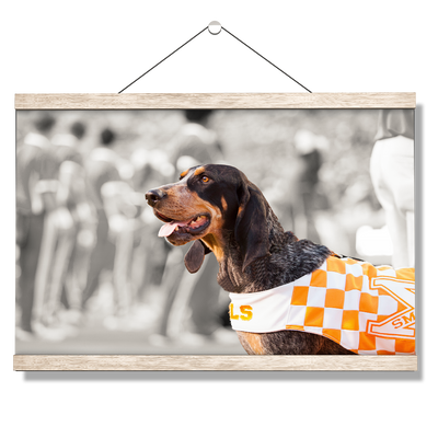 Tennessee Volunteers - Smokey X - College Wall Art #Hanging Canvas