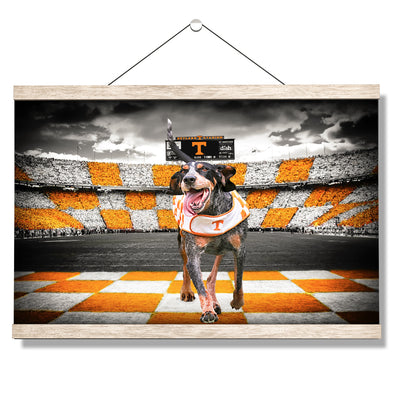 Tennessee Volunteers - Smokey's Backyard - College Wall Art #Hanging Canvas